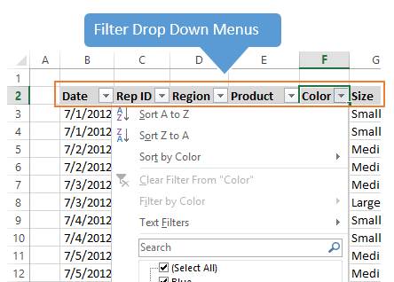 Excel Filter Drop Down Menus Excel 2013