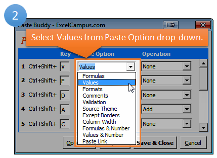 Paste Buddy Setup Step 2 - Paste Option
