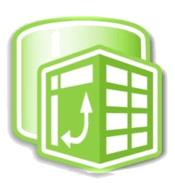 Excel PowerPivot Logo
