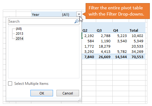 Filter Entire Pivot Table with Filter Drop-down Menus