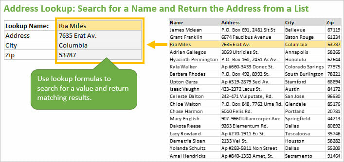 Address Lookup Search for a Name and Return Matching Results