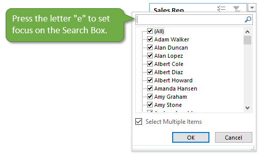 Press the Letter e to Set Focus on the Search Box in the Filter Menu Excel