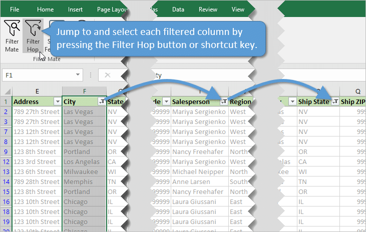 The Filter Mate Add-in for Excel - Excel Campus
