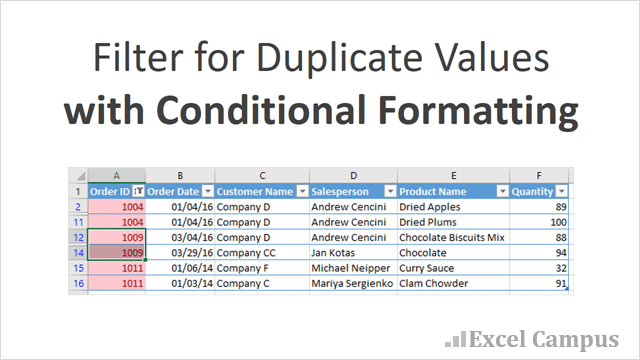 How to Filter for Duplicates with Conditional Formatting - Excel Campus