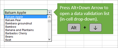 Alt Down Arrow to Open Data Validation List