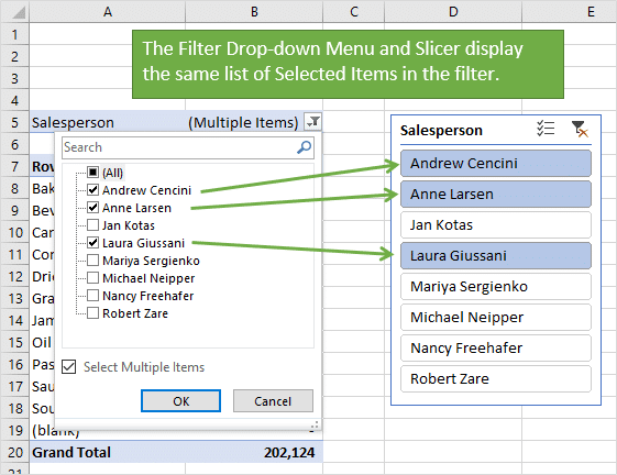 Filter Drop-down Menu and Slicer display same list of selected filter items