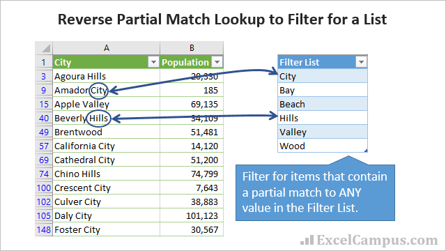 Reverse Partial Match Lookup to Filter for a List