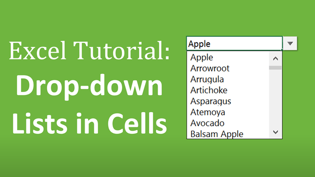 Excel Tutorial Drop Down Lists in Cells