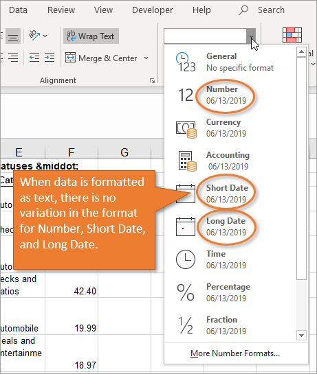 Number format drop down text