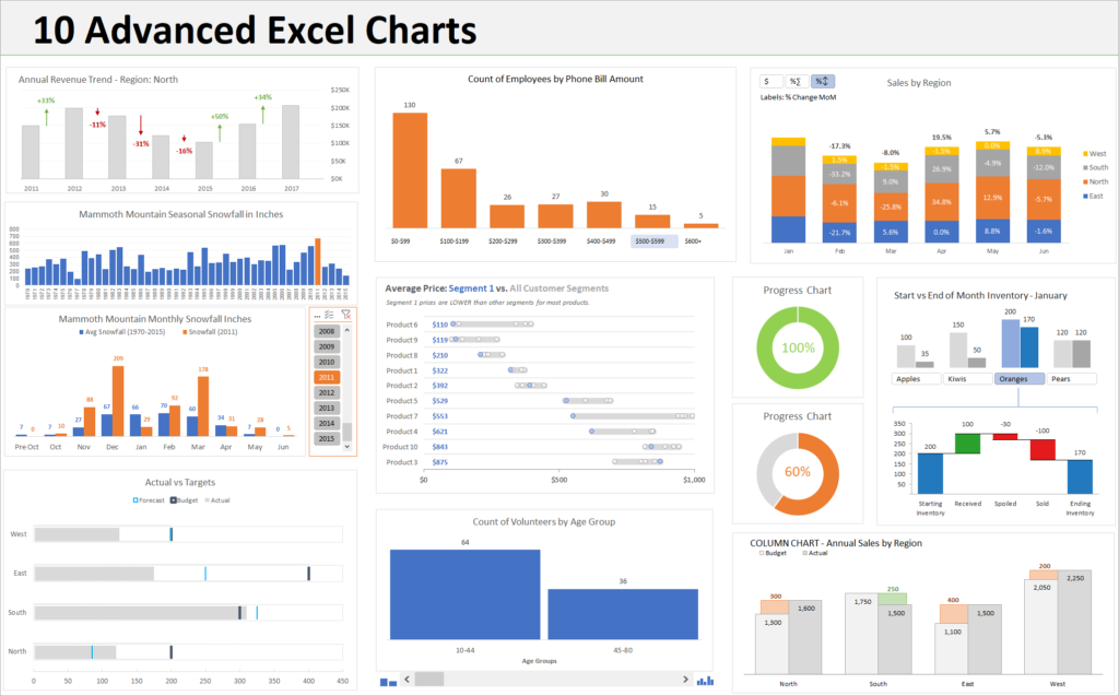 10 Advanced Excel Charts