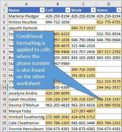 Conditional formatting applied to duplicate entries