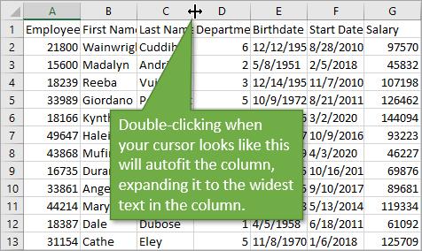 Autofit columns with double-click