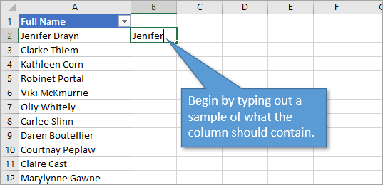Flash fill type out sample of what file should contain