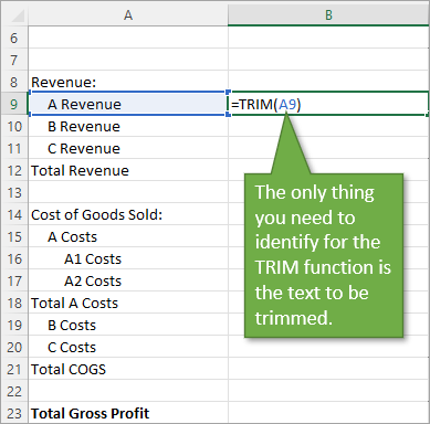 Trim function argument Text